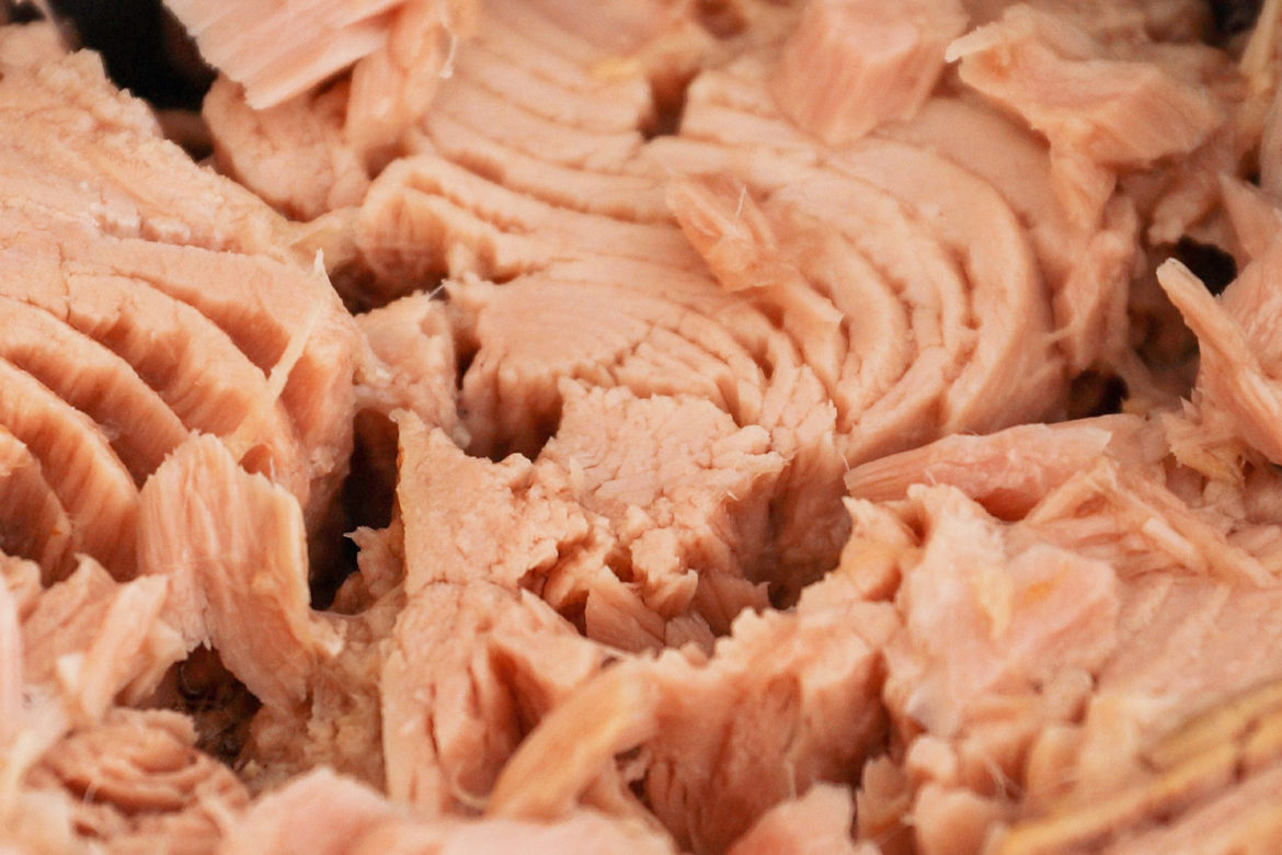 Canned Tuna: All You Need to Know